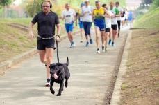Diabetes Marathon 2014, Forlì, foto 24