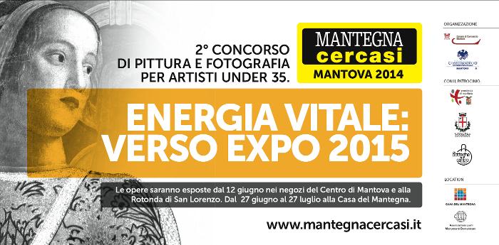 Mantegna cercasi 2014, Concorso Internazionale di Arte Contemporanea
