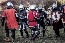 A.D. 1387 – Battaglia di Terra del Sole, foto 16