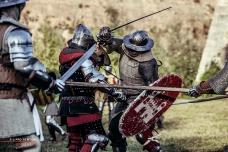 A.D. 1387 – Battaglia di Terra del Sole, foto 24