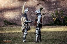 A.D. 1387 – Battaglia di Terra del Sole, foto 26