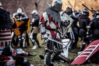 A.D. 1387 – Battaglia di Terra del Sole, foto 32