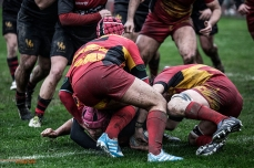 Rugby photography, #27