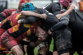 Rugby photography, #31