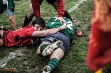 Rugby Photo #25