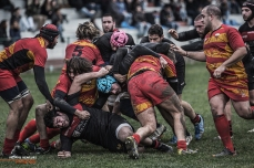 Romagna RFC – Pesaro Rugby, photo #29