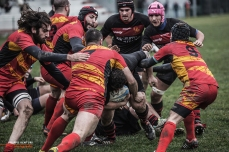 Romagna RFC – Pesaro Rugby, photo #30