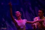 Moscow Ballet, The Nutcracker, photo 35