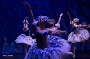 Moscow Ballet, The Nutcracker, photo 42