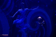Moscow Ballet, The Nutcracker, photo 48