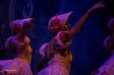 Moscow Ballet, The Nutcracker, photo 50