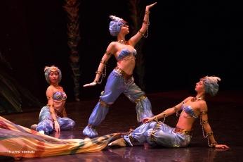 Moscow Ballet, The Nutcracker, photo 54