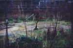 Serra abbandonata, Forlì, #20