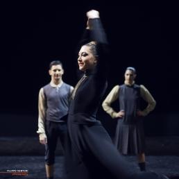 Giselle Ballet, photo 39