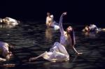 Junior Balletto di Toscana, Giselle, foto 149