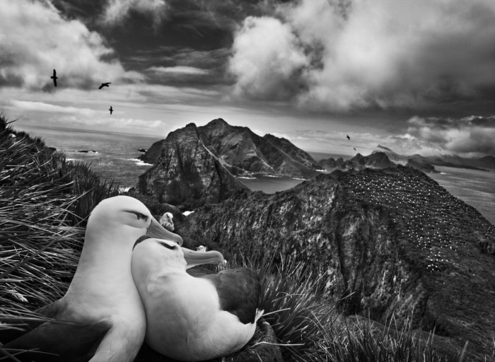Sebastiao Salgado, photo 5