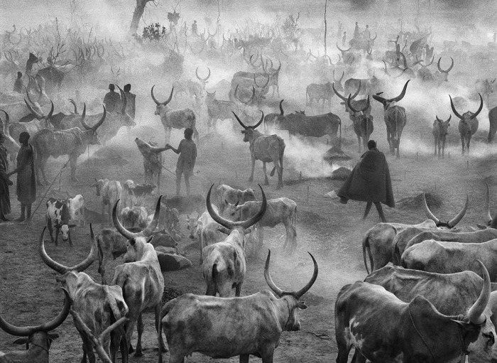 Sebastiao Salgado, photo 17