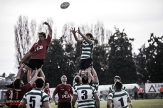 Rugby foto, #51
