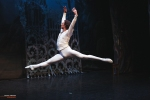 Ballet of Moscow, Swan Lake, photo 9