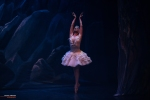Ballet of Moscow, Swan Lake, photo 11