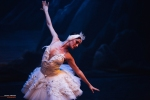 Ballet of Moscow, Swan Lake, photo 12