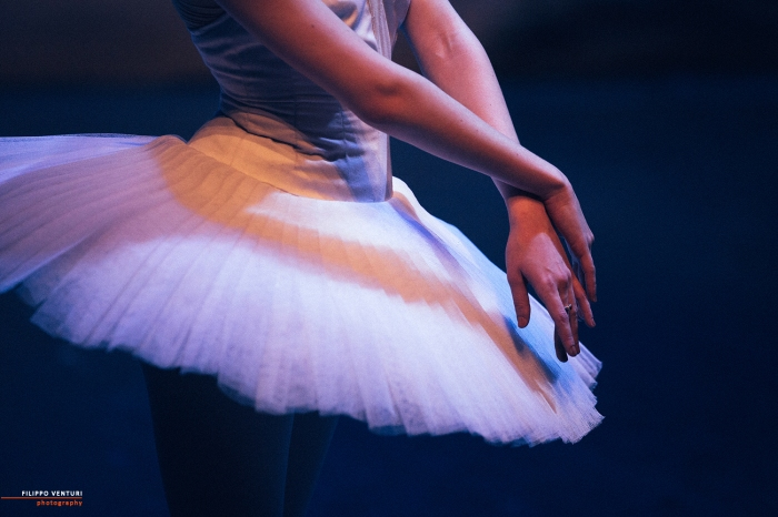 Ballet of Moscow, Swan Lake, photo 13
