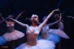 Ballet of Moscow, Swan Lake, photo 15