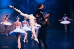 Ballet of Moscow, Swan Lake, photo 21