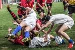 Under 18: Romagna RFC - Rugby Parma, Foto 6