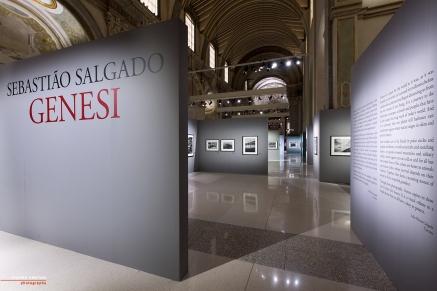 Mostra Genesi di Sebastião Salgado, a Forlì, foto 1