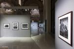 Mostra Genesi di Sebastião Salgado, a Forlì, foto3