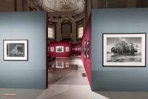 Mostra Genesi di Sebastião Salgado, a Forlì, foto 4