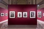 Mostra Genesi di Sebastião Salgado, a Forlì, foto7
