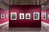 Mostra Genesi di Sebastião Salgado, a Forlì, foto 7