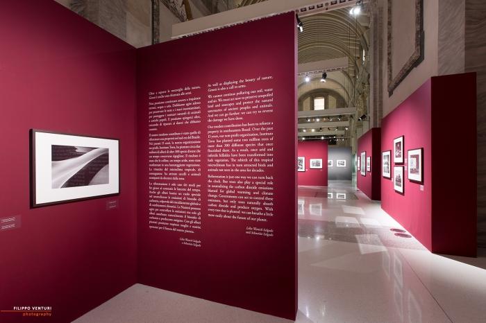 Mostra Genesi di Sebastião Salgado, a Forlì, foto 8