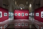 Mostra Genesi di Sebastião Salgado, a Forlì, foto9