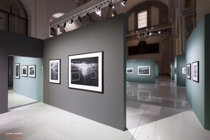 Mostra Genesi di Sebastião Salgado, a Forlì, foto 14
