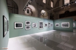 Mostra Genesi di Sebastião Salgado, a Forlì, foto15