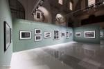 Mostra Genesi di Sebastião Salgado, a Forlì, foto 15