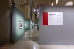 Mostra Genesi di Sebastião Salgado, a Forlì, foto 17