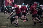 Romagna RFC – Union Rugby Viterbo, photo 16