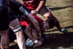 Romagna RFC - Amatori Parma Rugby - Photo 9