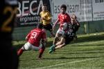 Romagna RFC – CUS Perugia Rugby, foto 23