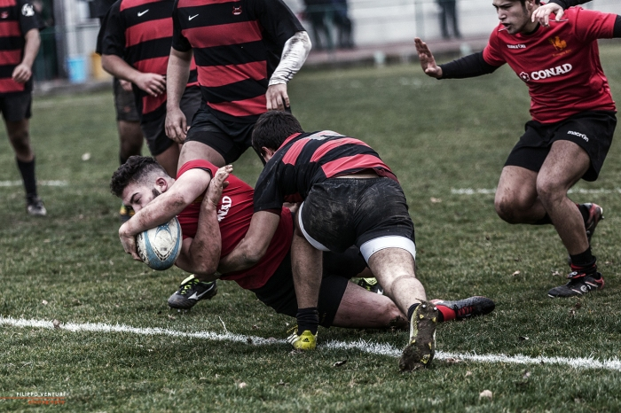 Rugby Photograph 37
