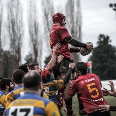foto_rugby_56