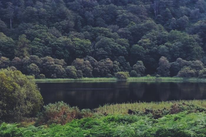 Diario di Viaggio in Irlanda - Giorno 2