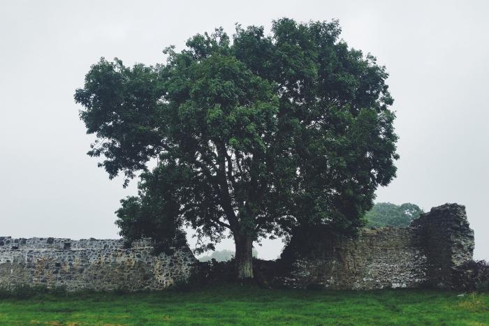 Diario di Viaggio in Irlanda - Giorno 14