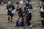 rugby_foto_03